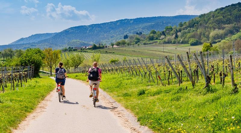 Sicherlich gibt es Tourenräder mit nur sieben Gängen, mit denen es sich ebenfalls geruhsam bis sportlich durch die Gegend radeln lässt. (#02)